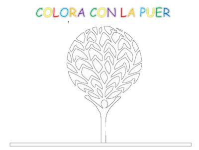 colora_logo